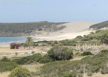 Parque Natural El Estrecho Zona Tarifa