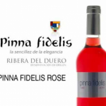 PINNA-FIDELIS-ROSE