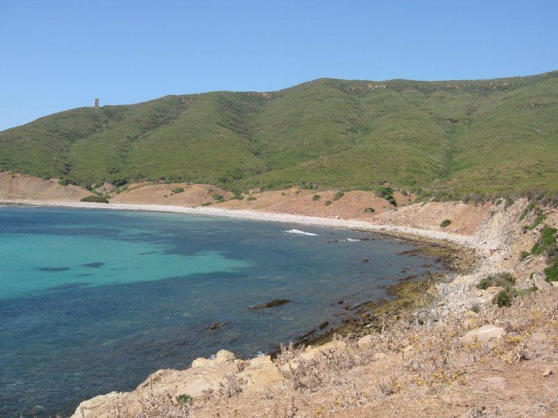 Playa de Cala Arena